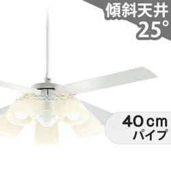 DP-38028E + DP-37973 + DP-37586 ダイコー製シーリングファンライト メイン画像