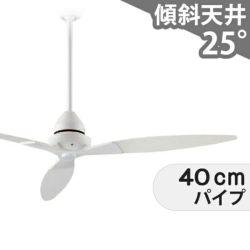 DP-38025 + DP-37650 ダイコー製シーリングファン メイン画像